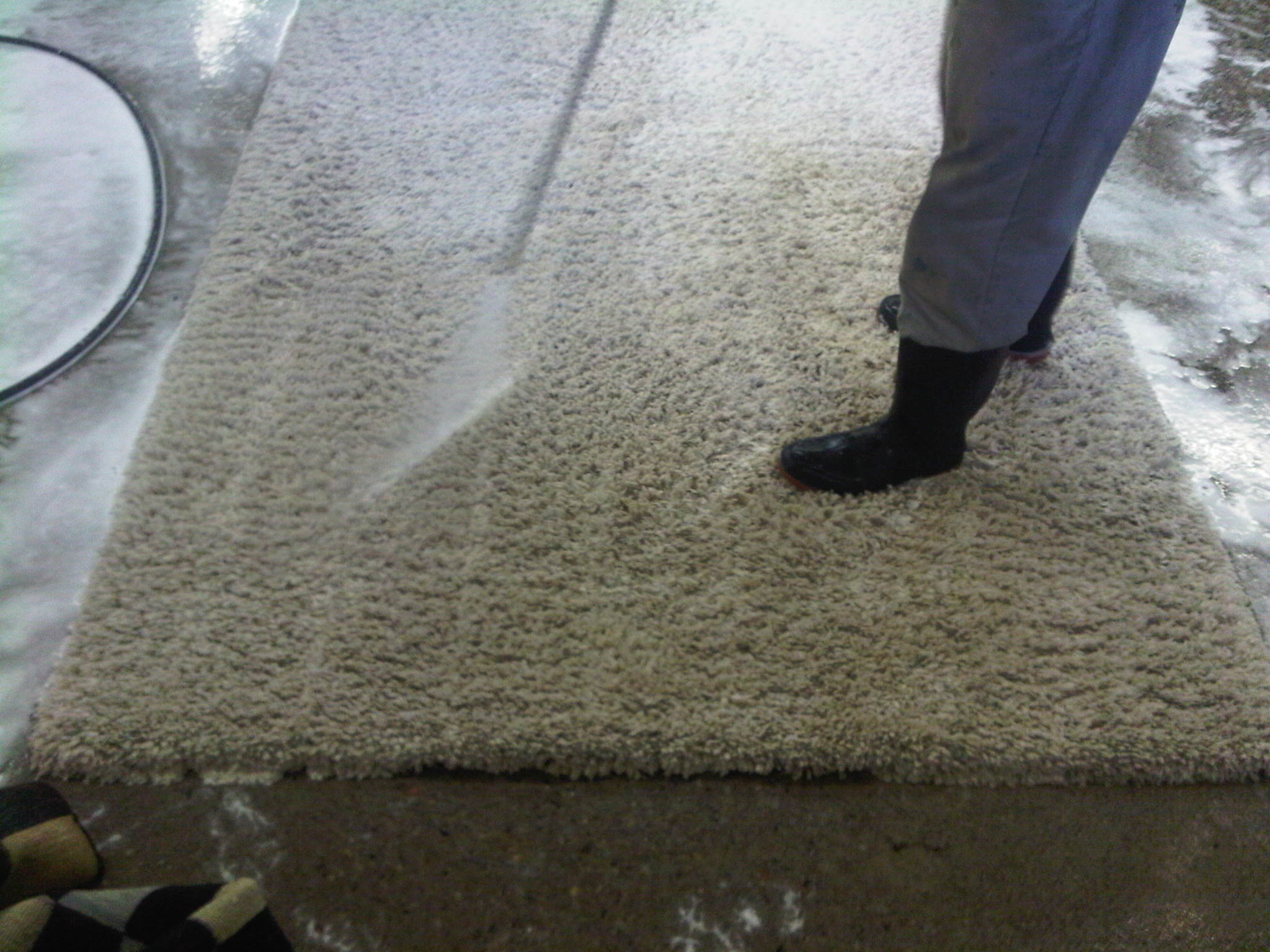 Shag rug cleaning Toronto Ontario